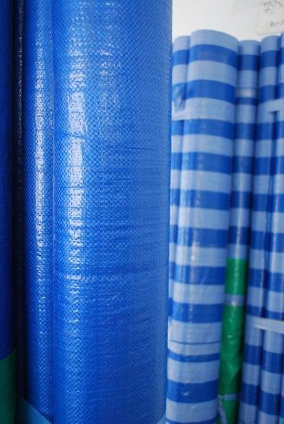 plastic-blue sheet